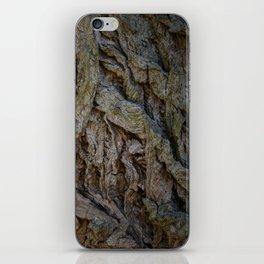 Vondelpark Detail iPhone Skin