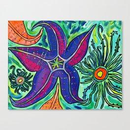 Alki Sea Stars and Anemones  Canvas Print