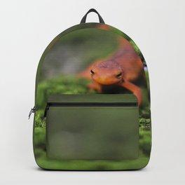 Coming For You - Orange Salamander Backpack
