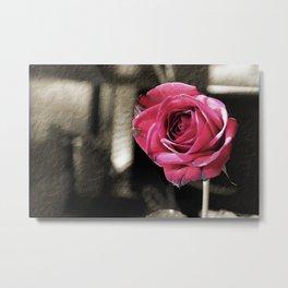 Withering Rose Metal Print