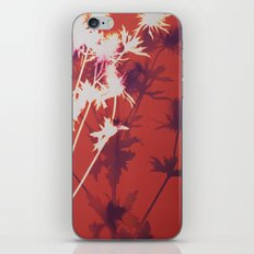 Photogram - Seaholly in Red iPhone & iPod Skin
