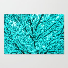 The Cyan Colored Snow Tree Canvas Print