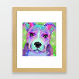Funky Pitbull Framed Art Print