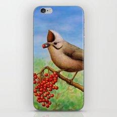 Taiwan Yuhina  iPhone & iPod Skin