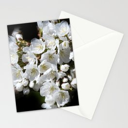 blossoms on black background -04- Stationery Cards