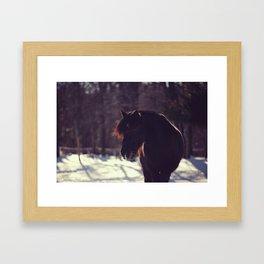 Tacoma  Framed Art Print