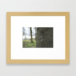 The chain on the tree Framed Art Print