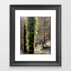 Re-Growth Framed Art Print
