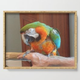 Macaw Serving Tray