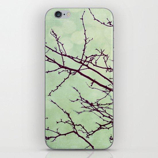December iPhone & iPod Skin