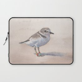 Monterey Bay Snowy Plover Laptop Sleeve