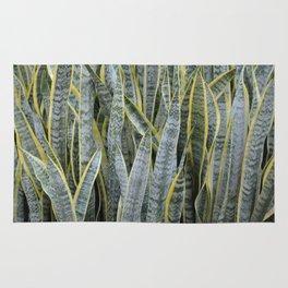 Snake Plants Rug