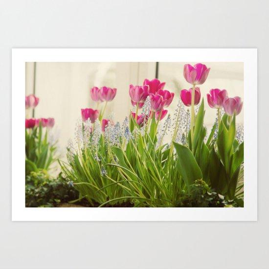 Spring Presentation Art Print