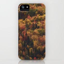 Landscape in Canada - Autumn iPhone Case