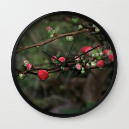 Japanese Red Quince Wall Clock