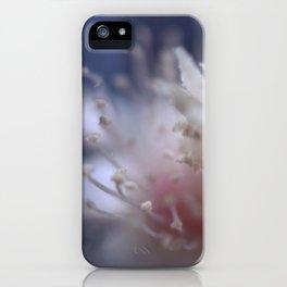 dreaming cactus iPhone Case