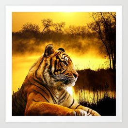 Tiger and Sunset Kunstdrucke