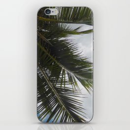 Palm Tree, Cayman Islands iPhone Skin
