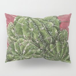 mexican cactus Pillow Sham