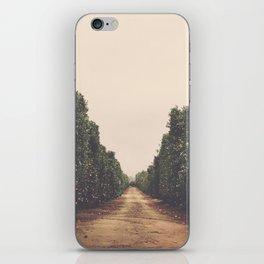 Vanish iPhone Skin