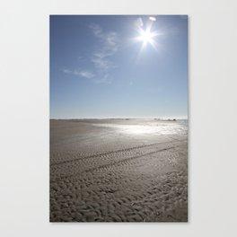 February sun Canvas Print