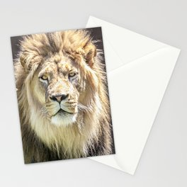 Lions Mane Stationery Cards