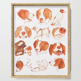 Faces and Poses of a Brittany Spaniel Serving Tray