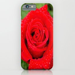 Veterans' Honor Rose iPhone Case