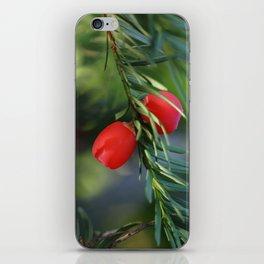 Yew seeds iPhone Skin