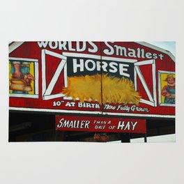 Worlds Smallest Horse Rug