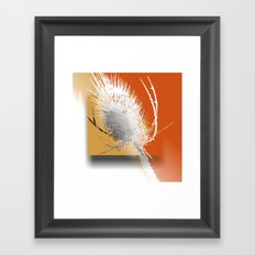teasel design Framed Art Print