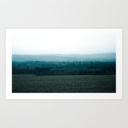 Contrast in Pasture Art Print