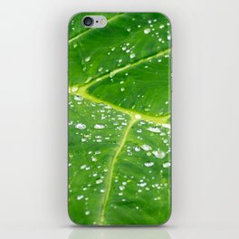 Morning Dew iPhone Skin