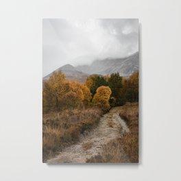 Toward the mountains Metal Print