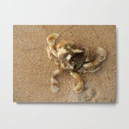 Happy crab Metal Print