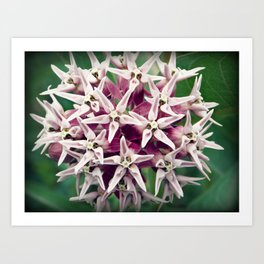 Bright Flower Art Print