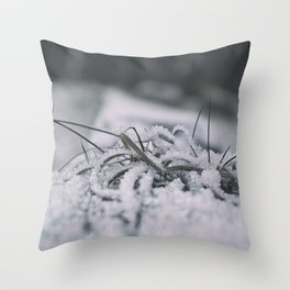 WINTRY 01 Throw Pillow