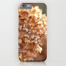 Winter Hydrangea III iPhone 6s Slim Case