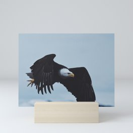 Bald Eagle In Seward Mini Art Print