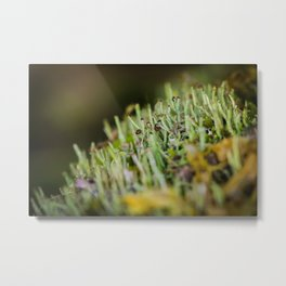 micro forest Metal Print