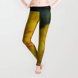 Marigolds Leggings