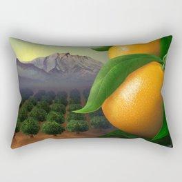 Satsuma Mandarins Rectangular Pillow