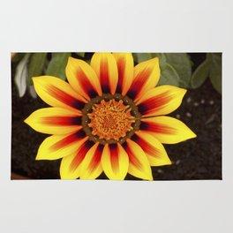 Gazania Flower Rug
