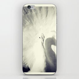 white peacock iPhone Skin