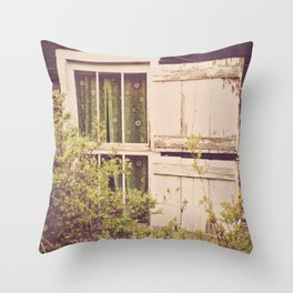 Antique Window Throw Pillow