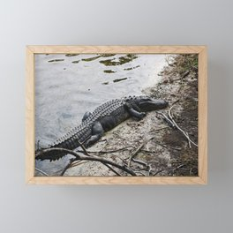 Eager Gator Framed Mini Art Print