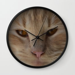 sandy, close up Wall Clock