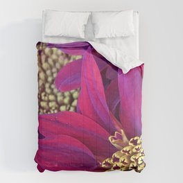 Exotic Bright Pink Red Flowers With Gold Centers Comforters