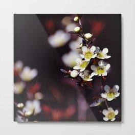 Tantoon Tea Tree Metal Print