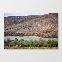Mountains & Zebras Canvas Print